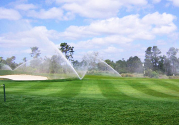 Immerse Elite Wetting Agent